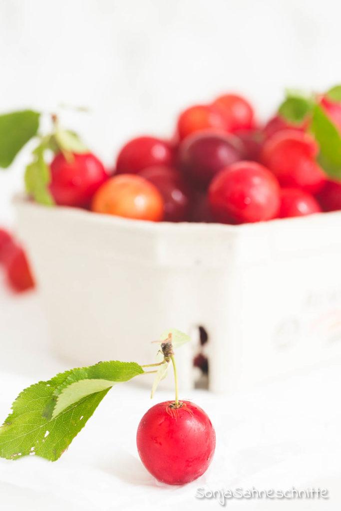 wilde Mirabellen Marmelade mit Vanille ohne Gelierzucker, ein tolles Geschenk aus der Küche und ihr braucht nur 3 Zutaten. #Geschenk #gesund #marmelade #mirabellen #obst #ohnezucker